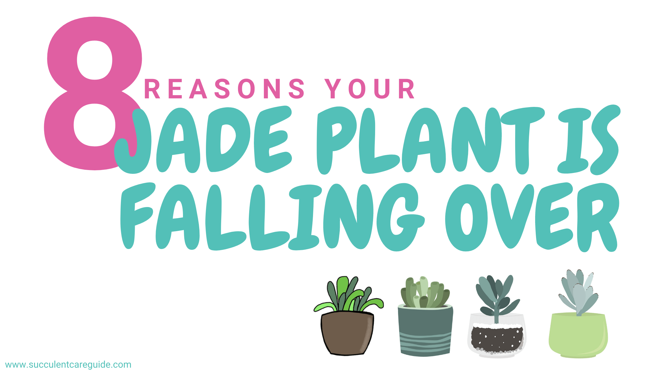 jade plant falling over
